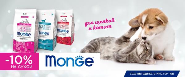 Скидка 10% на сухой корм Monge для щенков и котят!