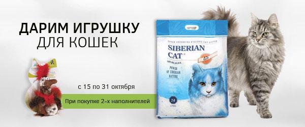При покупке 2-х наполнителей Сибирская кошка  – игрушка в подарок!