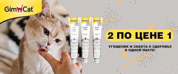 Акция 1+1 на пасты для кошек Gimcat Expert Line!