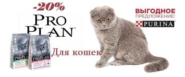 Супер-скидка 20% на корма для кошек Pro Plan!