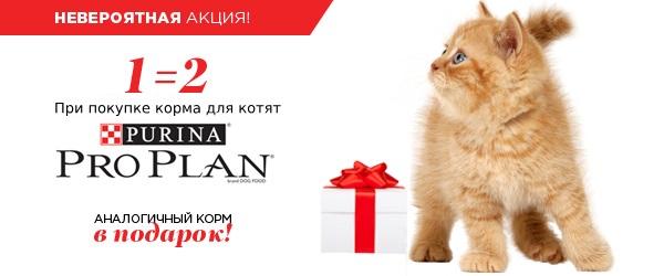 Pro Plan для котят 1+1!