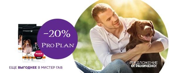 Скидка 20% на Pro Plan Small&Mini Adult!
