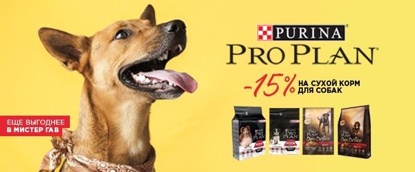 -15% на сухие корма Pro Plan для собак!