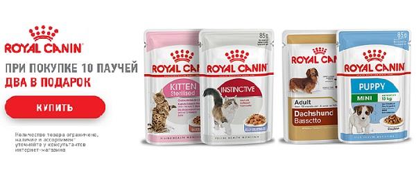 Дарим паучи Royal Canin!