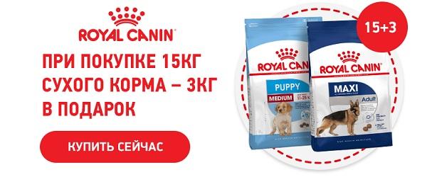 При покупке 15 кг Royal Canin - 3 кг в подарок!