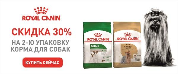 Скидка 30% на вторую упаковку корма для собак Royal Canin!
