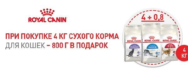 При покупке 4 кг корма Royal Canin - 800 г в подарок!
