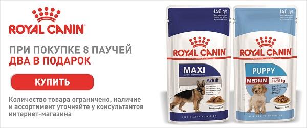При покупке 8 паучей Royal Canin - 2 пауча в подарок!