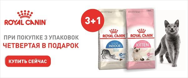 4-ая упаковка корма Royal Canin в подарок!