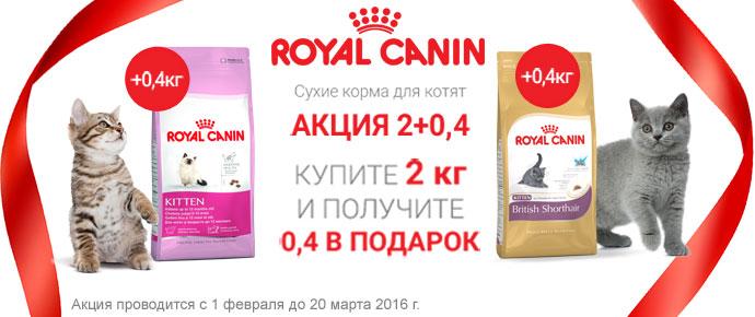 Упаковка 400 г в подарок при покупке 2 кг Royal Canin для котят!