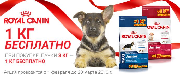 Royal Canin для щенков: 3+1 кг в ПОДАРОК!