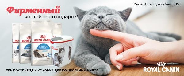 При покупке корма для кошек Royal Canin гаммы Indoor - контейнер в подарок!
