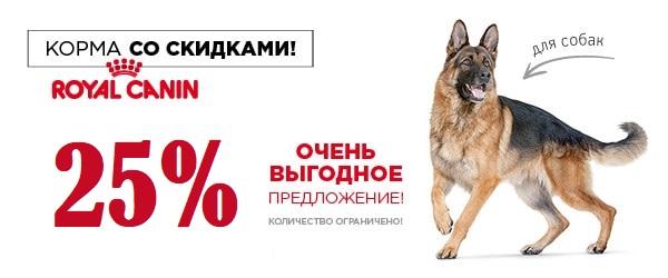 Скидка 25% на большие упаковки корма для собак Royal Canin!