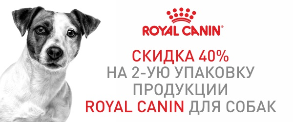 Скидка 40% на корма Royal Canin для мини пород
