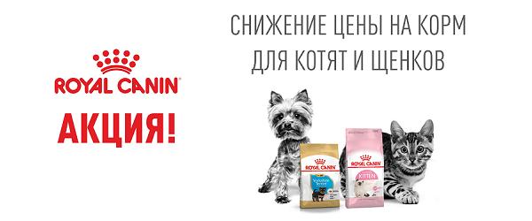 Скидка 30% на вторую упаковку корма для щенков и котят Royal Canin!