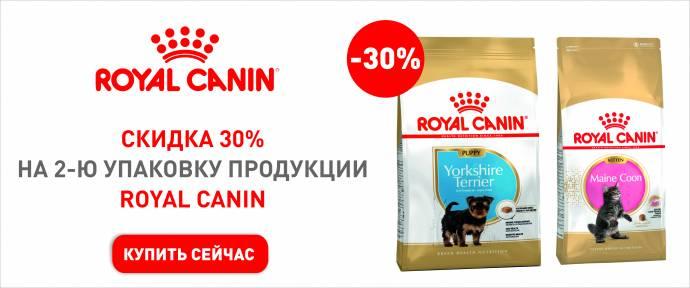 -30% на корма для щенков и котят Royal Canin!