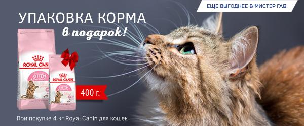 При покупке 4 кг корма Royal Canin для котят - упаковка 400 г в подарок!