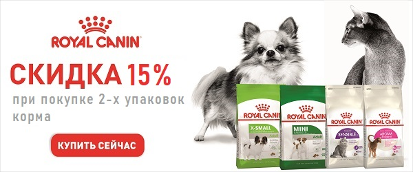 При покупке 2-х упаковок корма Royal Canin - скидка 15%!