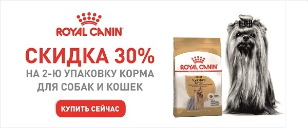 Скидка 30% на вторую упаковку породного корма Royal Canin