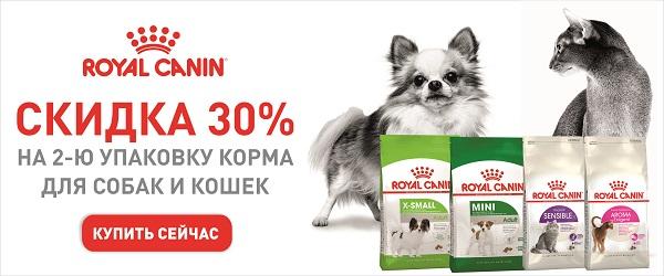 -30% на вторую упаковку корма Royal Canin