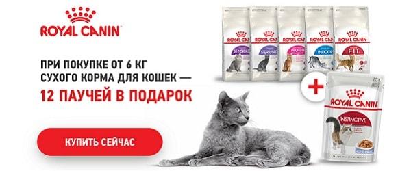 При покупке 6 кг Royal Canin для кошек - 12 паучей в подарок!