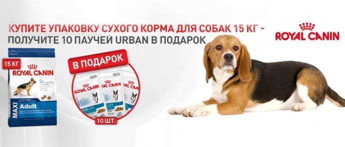 При покупке корма для собак Royal Canin упаковка влажного корма в подарок!