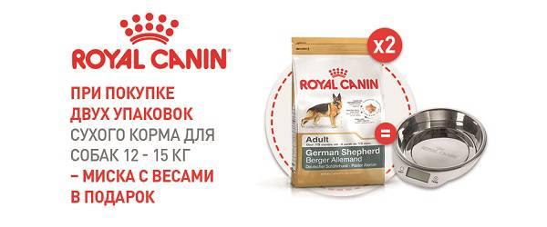 При покупке двух упаковок корма Royal Canin 12 -15 кг - миска с весами в подарок!