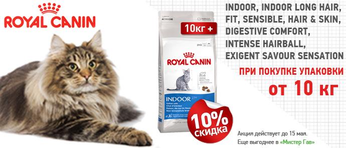 Скидка 10% на корма для кошек Royal Canin