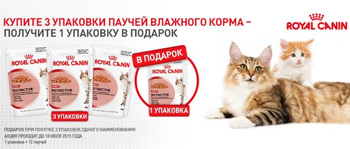 Royal Canin: паучи для котят и кошек 3+1