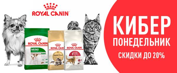 Кибер скидки на корм Royal Canin!