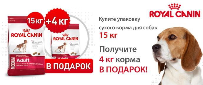 Упаковка 4 кг в подарок при покупке 15 кг Royal Canin для собак!