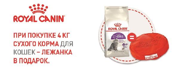 При покупке Royal Canin 4 кг для кошек - подушка в подарок!