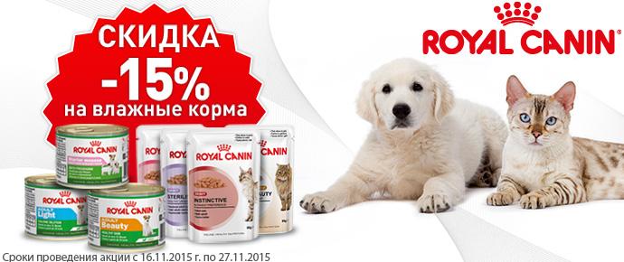 Скидка 15% на влажные корма Royal Canin!