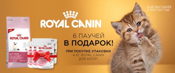 При покупке 4-х Royal Canin для котят - 6 паучей в подарок!