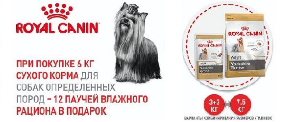 При покупке Royal Canin для определенных пород - коробка паучей в подарок!