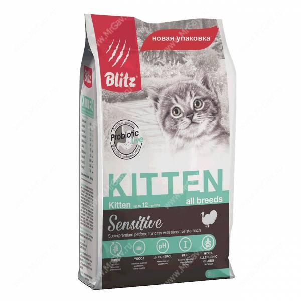 Blitz Kitten - Интернет-зоомагазин Мистер Гав