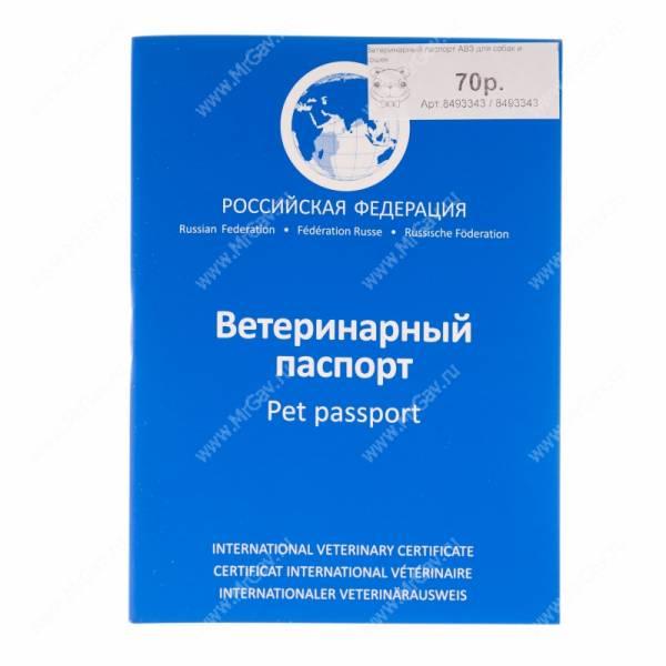 Если и вводить визовый режим с Россией, то только биометрический, - Климкин - Цензор.НЕТ 2891