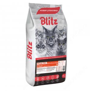 Blitz Poultry Cat