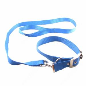 Комплект нейлоновый Ferplast Club поводок + ошейник 120 см*2,5 см/55 см*3 см, синий