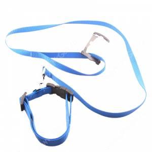 Комплект нейлоновый Ferplast Club поводок + ошейник 120 см*1,5 см/56 см*2 см, синий