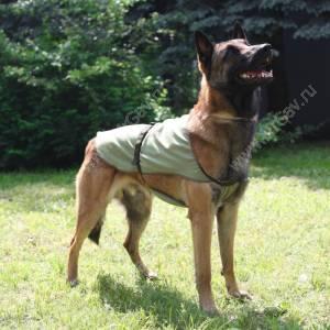 Охлаждающая попона для собак OSSO, 80 см