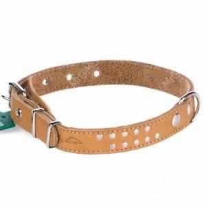 Ошейник кожаный Аркон, 51 см*2,5 см, с подкладкой, бежевый