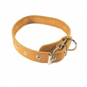 Ошейник кожаный Лаурон, 52 см*2,5 см, украшенный, коричневый