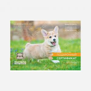 Подарочный сертификат Щенок