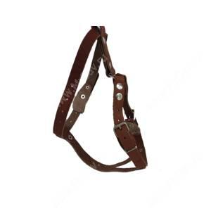 Шлейка кожаная Аркон 40-50, 32-60*2 см, коньячная