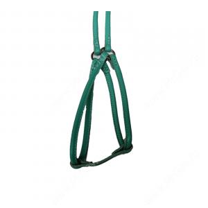 Шлейка с поводком кожаная круглая Collar Glamour, 46-66 см, 40-60 см, 105 см*0,6 см, бирюзовая