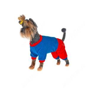 Свитер шерстяной для собак Хэппи Шарли-4