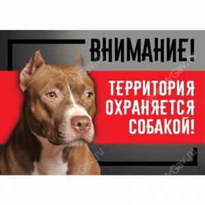 """Табличка """"Территория охраняется собакой"""", стаффордширский терьер, 25 см*17 см"""