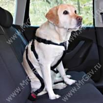 Автомобильный ремень безопасности для собак Trixie, 80-100 см