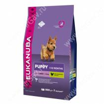 Eukanuba Puppy&Junior Small Breed (Курица), 0,8 кг